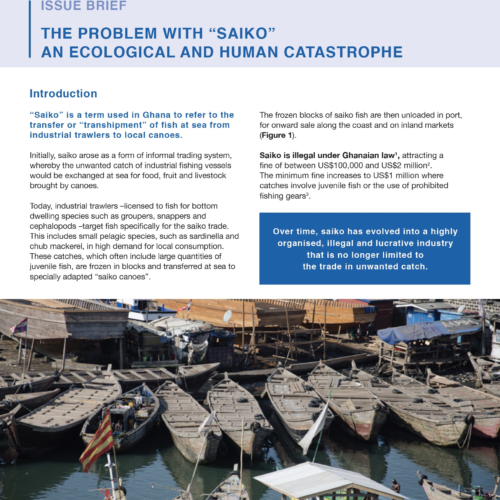 The problem with 'saiko', an ecological and human catastrophe