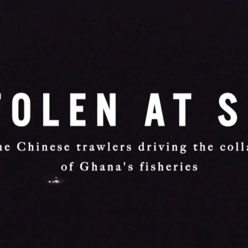 Stolen at Sea: The Chinese Trawlers Driving the Collapse of Ghana's Fisheries