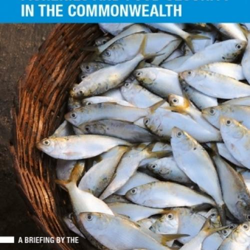 Fisheries and Food Security in the Commonwealth