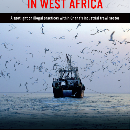 China's hidden fleet in West Africa: a spotlight on illegal practices within Ghana's industrial trawl sector
