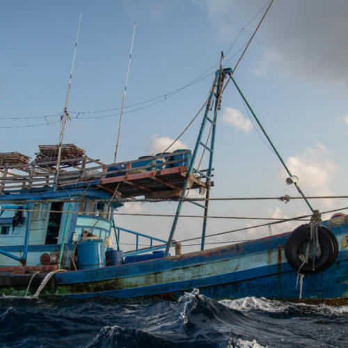 Improving Transparency in fisheries