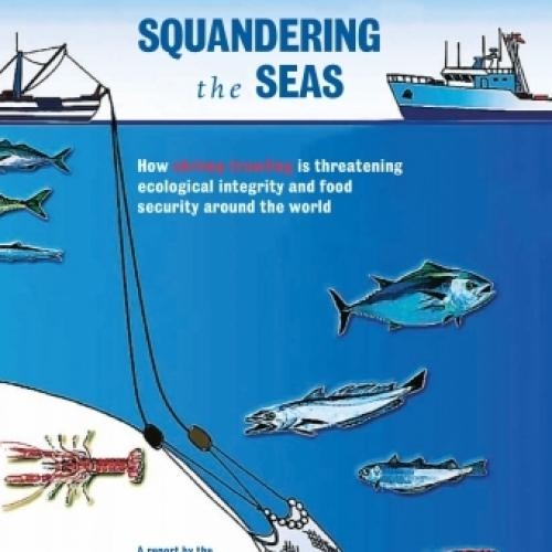 Squandering the Seas