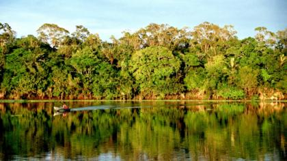 Protecting biodiversity key to securing human rights