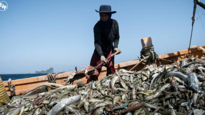 EJF: Thailand's efforts to eradicate illegal fishing and seafood slavery remain inadequate