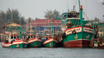 Korean Ministry of Oceans and Fisheries, EJF and WWF to host regional conference addressing unsustainable and illegal fishing