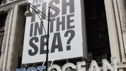 EJF's 'What's the Catch?' at Project Ocean Selfridges 2011