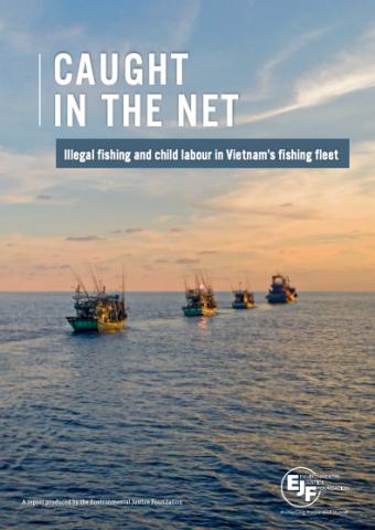 Caught In The Net   Illegale Fischerei und Kinderarbeit in der vietnamesischen Fischereiflotte