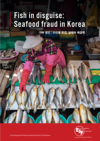 Fish in disguise: Seafood fraud in Korea (Korean version)