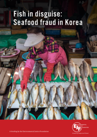 Fish in disguise: Seafood fraud in Korea