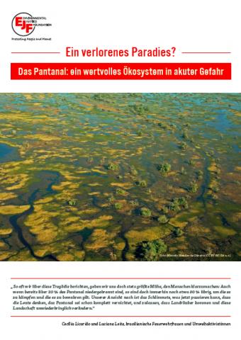Ein verlorenes Paradies? Das Pantanal: ein wertvolles Ökosystem in akuter Gefahr