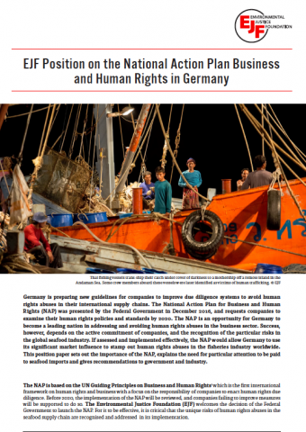 EJF Position on the National Action Plan Business and Human Rights in Germany