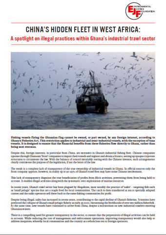 Briefing: China's hidden fleet in West Africa - a spotlight on illegal practices within Ghana's industrial trawl sector