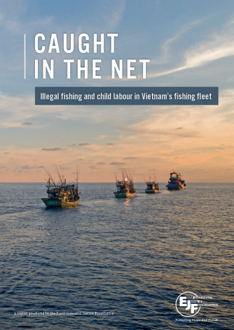 Caught in the net: Illegal fishing and child labour in Vietnam's fishing fleet