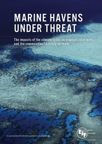 Marine Havens Under Threat | Auswirkungen der Klimakrise auf Korallenriffe und Folgen für Biodiversität und Küstengemeinden