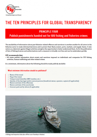 Transparency principle four: Factsheet for implementation