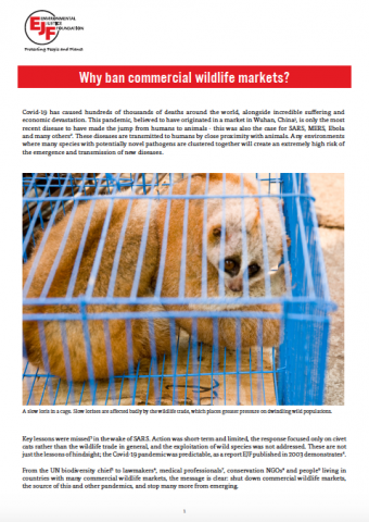 Why ban commercial wildlife markets?