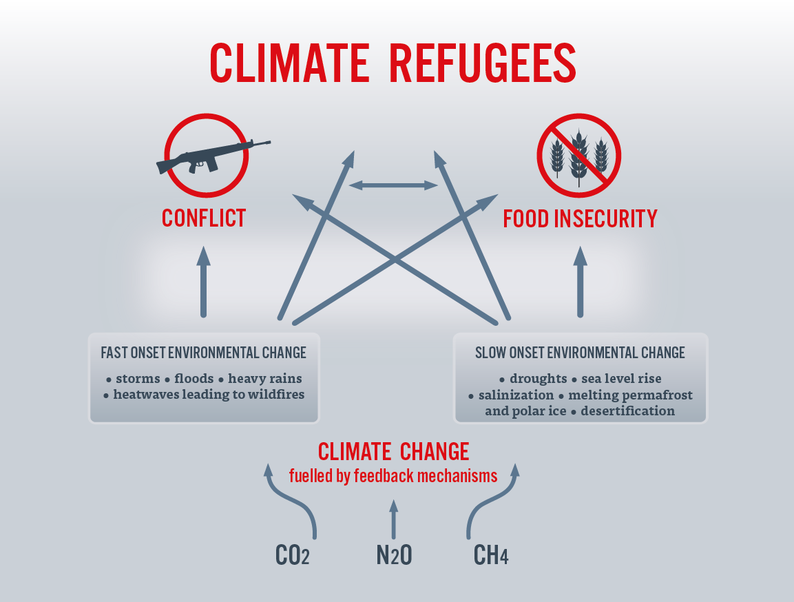 Climate Refugees Inforgaphics 2 New