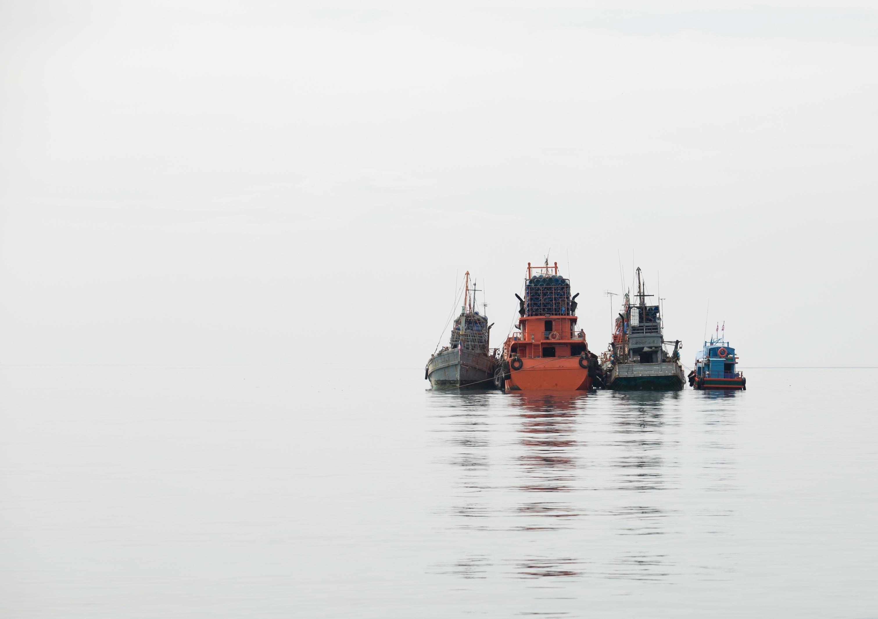 Illegale Fischerei